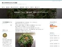 お好み焼き「せと」(東広島市)水菜トッピング 2014.2.27