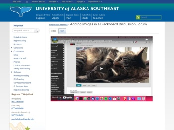 Adding Images in a Blackboard Discussion Forum - the ...