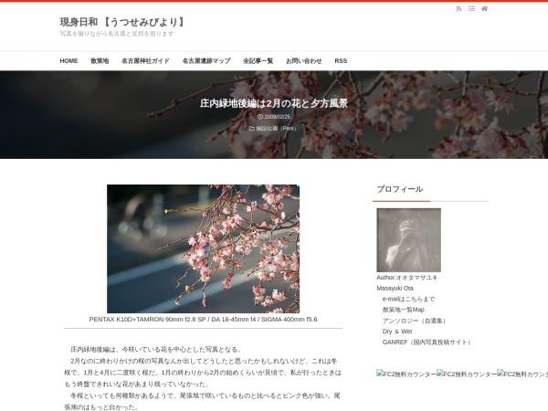 庄内緑地後編は2月の花と夕方風景