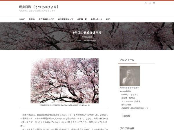 5年目の覚成寺彼岸桜