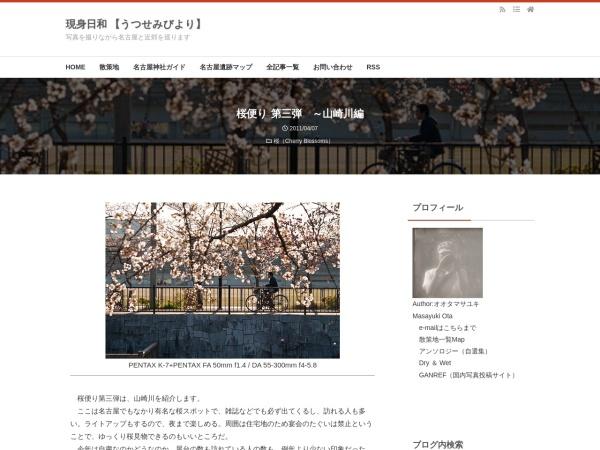 桜便り 第三弾 ~山崎川編