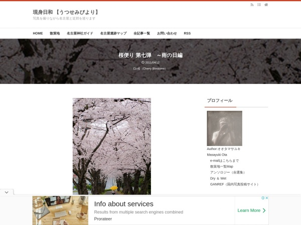 桜便り 第七弾 ~雨の日編
