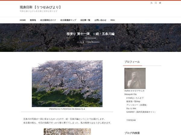 桜便り 第十一弾 ~続・五条川編