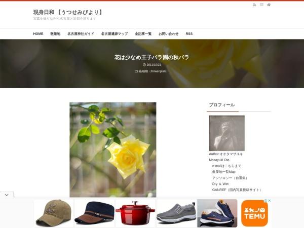 花は少なめ王子バラ園の秋バラ