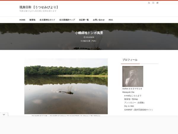 小幡緑地トンボ風景