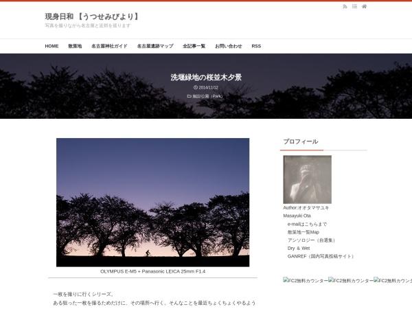洗堰緑地の桜並木夕景