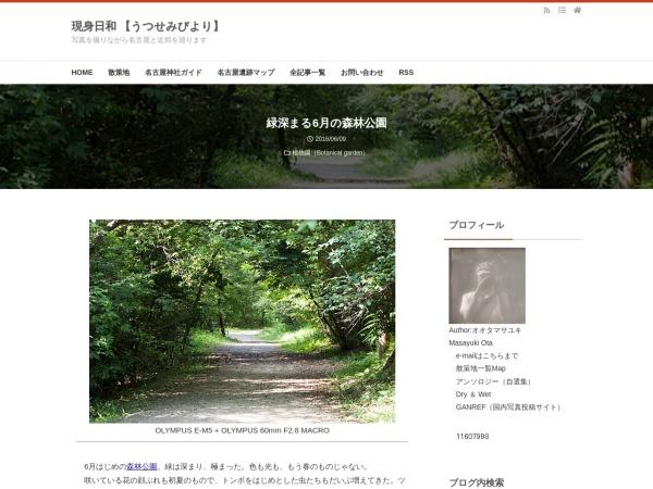 緑深まる6月の森林公園