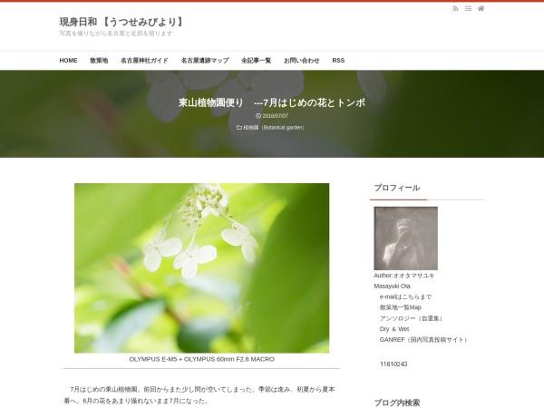 東山植物園便り ---7月はじめの花とトンボ