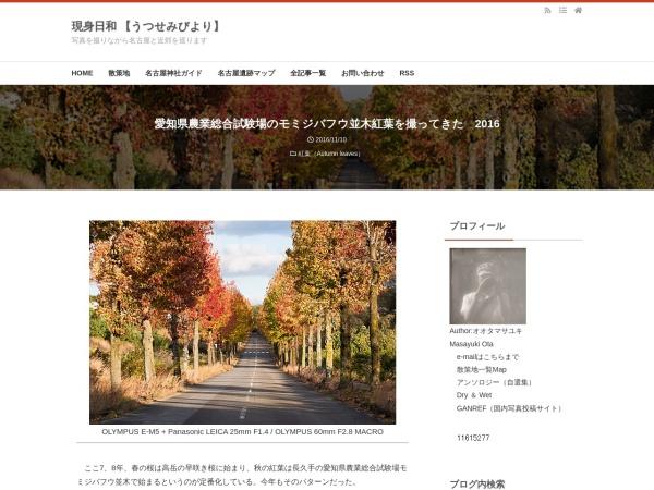 愛知県農業総合試験場のモミジバフウ並木紅葉を撮ってきた 2016