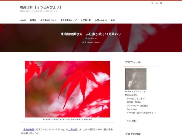 東山植物園便り ---紅葉が続く11月終わり