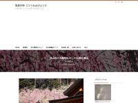 犬山市の大縣神社のしだれ梅を撮る