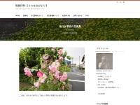 道行き季節の花風景