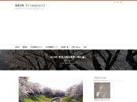 2019年 香流川残桜風景<晴れ編>