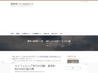 勝手に発表第十一弾 ~紹介したい女性アーティスト編