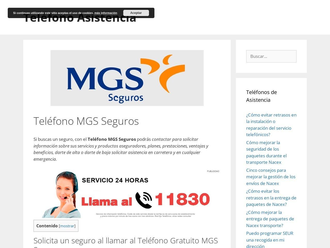 Mgs seguros telefono