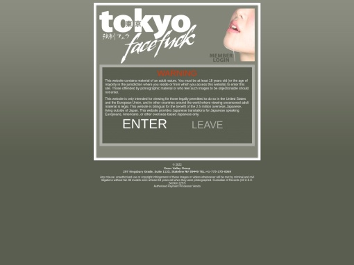 Tokyo Face Fuck screenshot