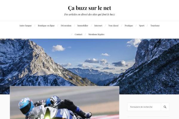 www.buzzdunet.fr
